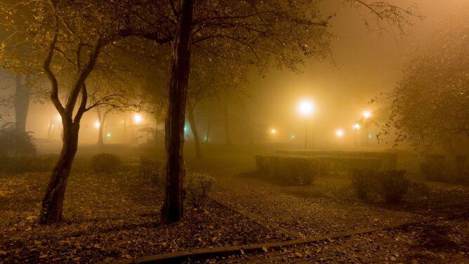 Uwaga na gęste mgły. Ostrzeżenia IMGW w większości województw