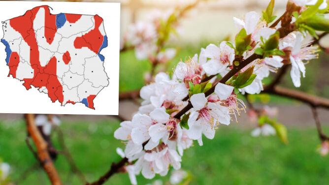 Prognoza na kwiecień. Wstępne przewidywania IMGW