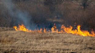 Trzy osoby zginęły, dziesiątki rannych. Od początku roku 23 tysiące pożarów traw